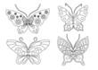 Schmetterling Set