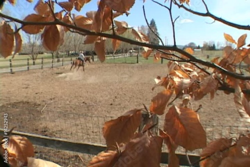 Woman Rides Horse on Farm