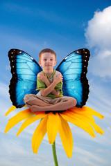 Beautiful boy-butterfly
