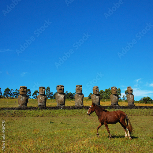 Moai and Hourse (Easter Island)