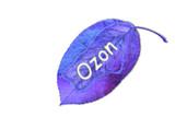ozon poster