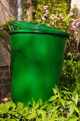 Regentonne, rain barrel