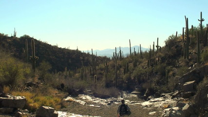 Hiker in desert landscape - HD