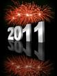 Feuerwerk 2011