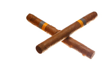havana cigars isolated on white