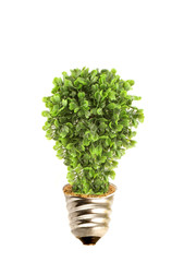 Eco tree lightbulb