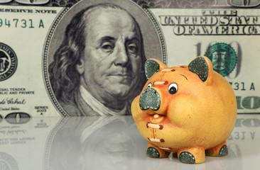 Piggy bank  on big dollar background