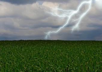 Lightning across the countryside field