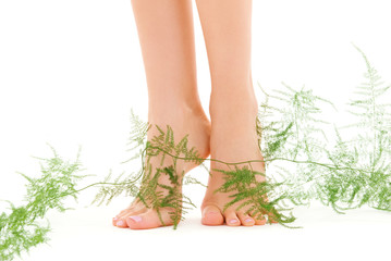 female legs with green plant