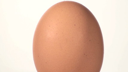 Egg close-up seamless loop against white - HD