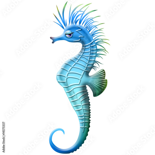 Cavalluccio marino seahorse ippocampe cartoon immagini e for Foto cavalluccio marino