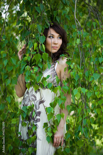 beautiful girl in a birchwood
