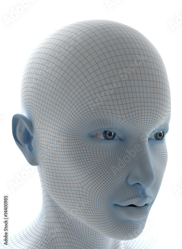 3d woman face with soft wireframe