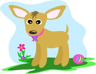 Chibi the Chihuahua Dog