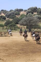 spanische reiter © Petra Eckerl