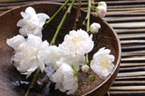 Fototapety bowl of cherry blossoms on bamboo mat