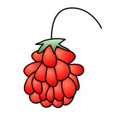 Childish Illustration, Isolated Vector Raspberry