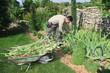 le jardin....
