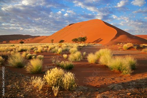 Aluminium Woestijn Desert landscape, Sossusvlei, Namibia, southern Africa