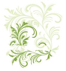 floral ecolo vert