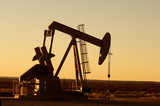 Working oil pump in rural Texas at sunset poster