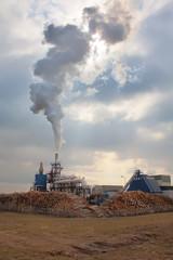 Smoko of burning wood
