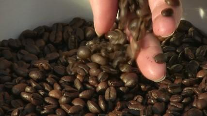 toucher les grains de café