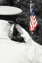 Military officer saluting flag