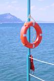 A life buoy at the sea. poster