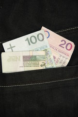 Polish money in pocket