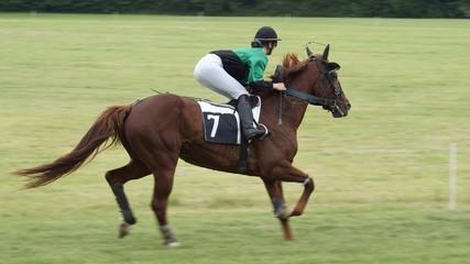 Equitation #2