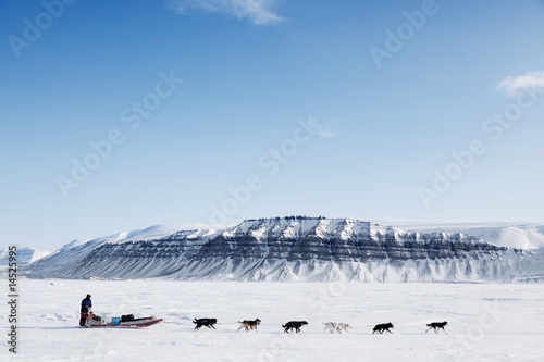 Foto op Canvas Poolcirkel Dog Sled Expedition