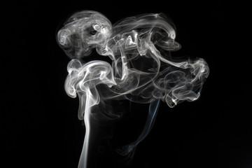 rauch hund