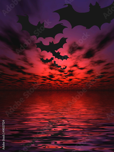 Bats flying over the water