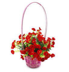 Hanging Basket with Flowers Isolated