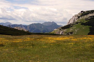 Berglandschaft mountains