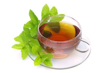 Tee Pfefferminze - tea Peppermint 05