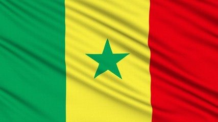 Senegalese flag, with real structure of a fabric