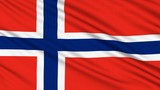 Norwegian Flag, with real structure of a fabric poster