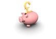 piggy bank pound