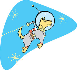SpaceDog with Jetpack