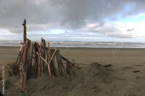 Drift Wood Time Lapse with Ocean