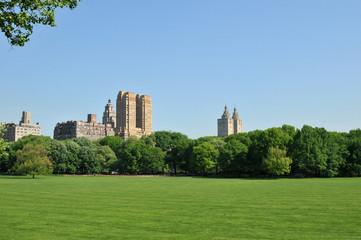 Central Park on a Clear Blue Morning.