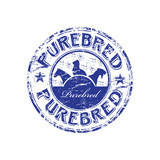 Purebred rubber stamp poster