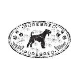 Black grunge purebred rubber stamp poster