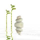 Simplicity of Zen poster