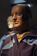 Portrait of a crashtest dummy.