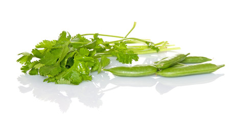 Cilantro and Sugar Snap Peas