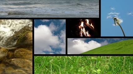 Collage Natura