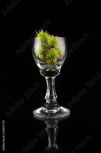 Glass full of chestnuts